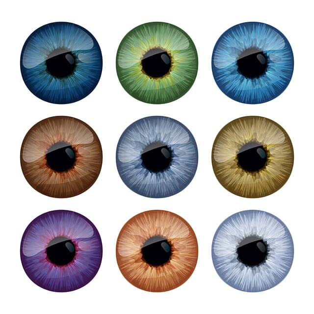 iris-eye-colors