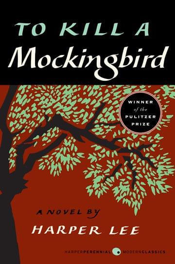 to-kill-a-mockingbird-braille