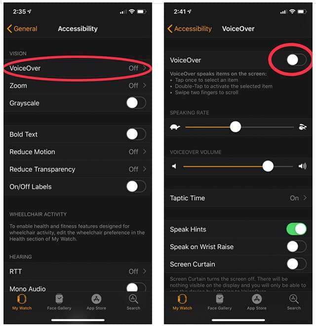 How to activate voiceover on Apple Watch app (part 2)
