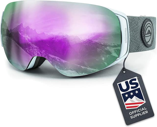 wildhorn-roca-us-ski-team-goggles