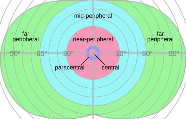 peripheral-vision-field